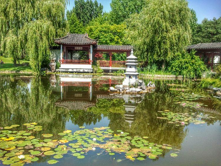 Chinesischer Garten 5