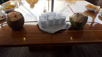 isabela puerto villamil cocktails