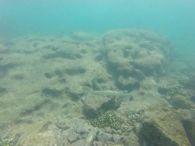 san cristobal snorkeling2