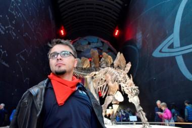 National History Museum: Stegosaurus